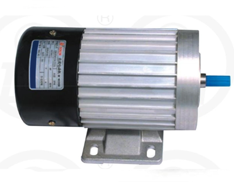 Electric DC Motor magnet vertical